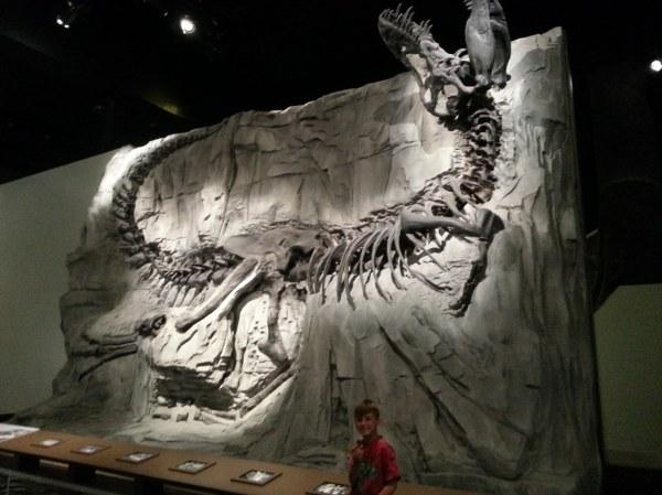 A humungus Tyransisaurus Rex