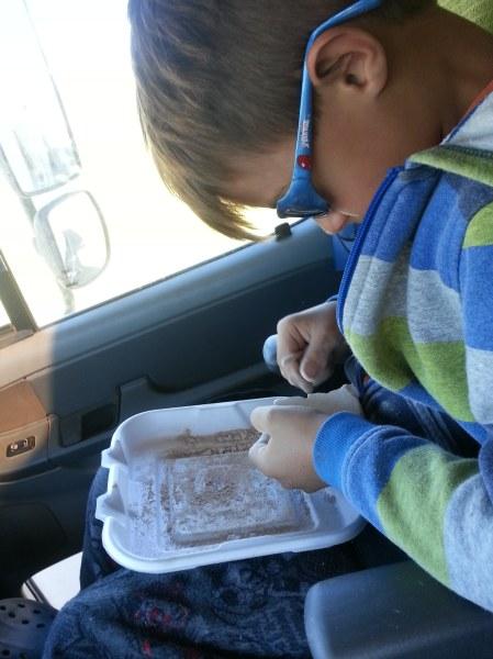 Traveling Mr. Paleontologist