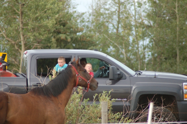 2 young onlookers enjoying the ponies