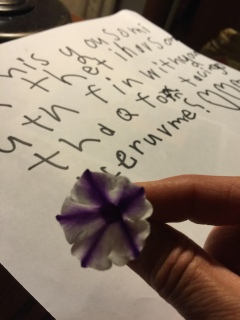 The special flower with the note