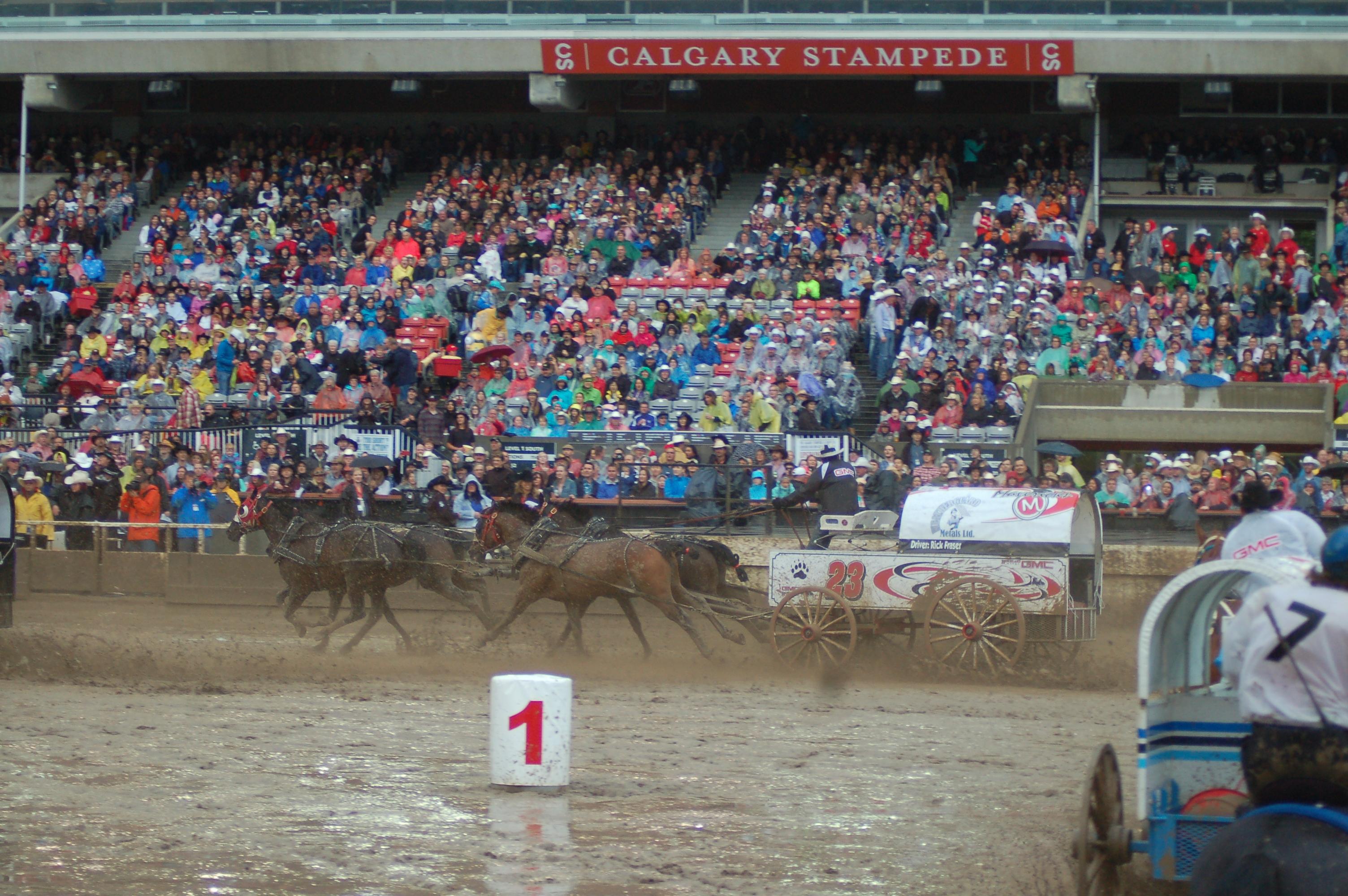 Calgary Stampede Alberta Canada Day 9 The Travelin