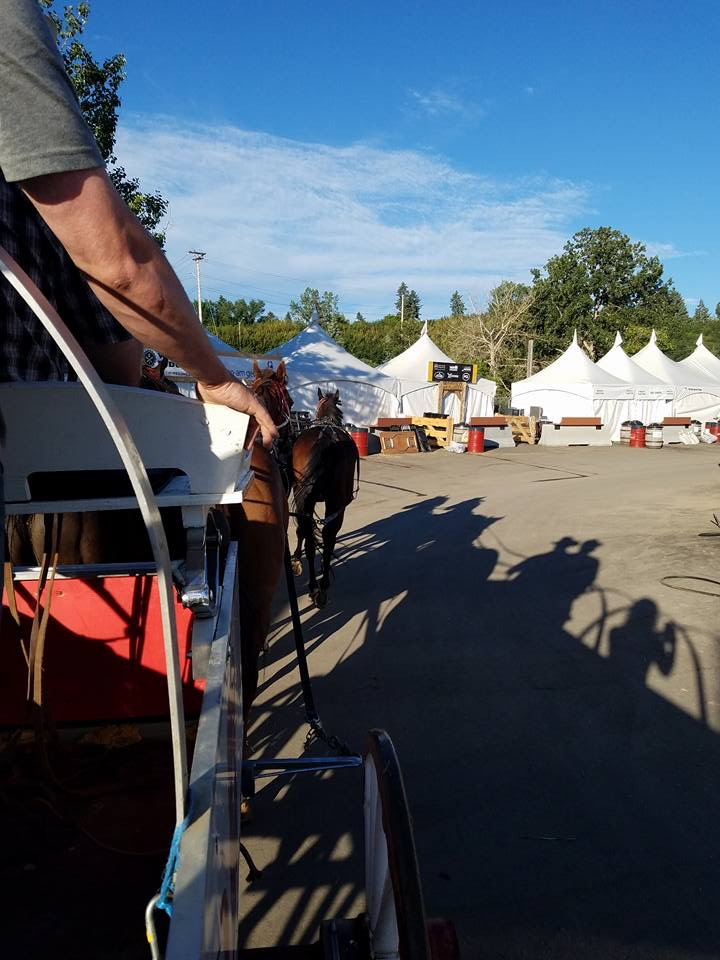 Calgary Stampede 2017 Day 10 The Travelin Trailer